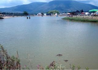 האגם - פארק הדייג ספסופה